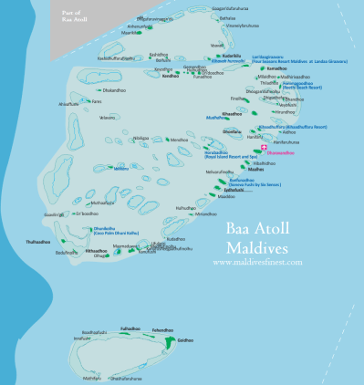 Gaafu Dhaalu Atoll   Dog Breeds Picture