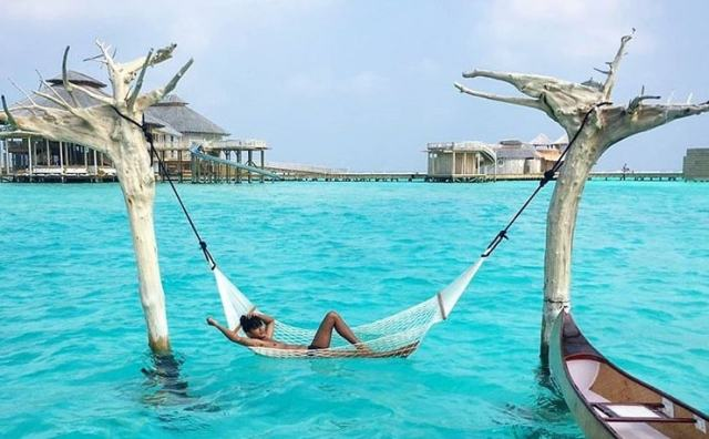 Image result for the maldives hammock