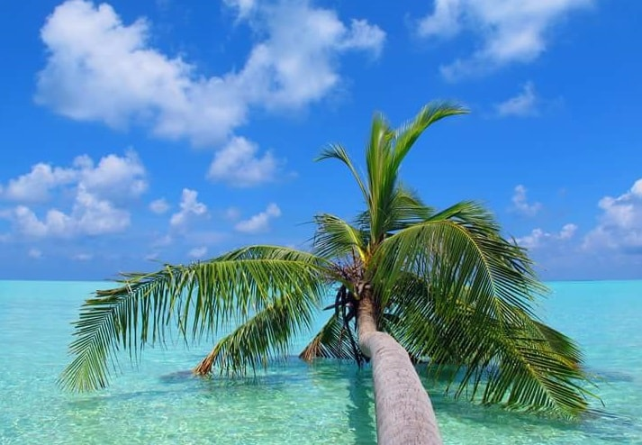 Keyodhoo Maldives Budget Holiday With Day Trips