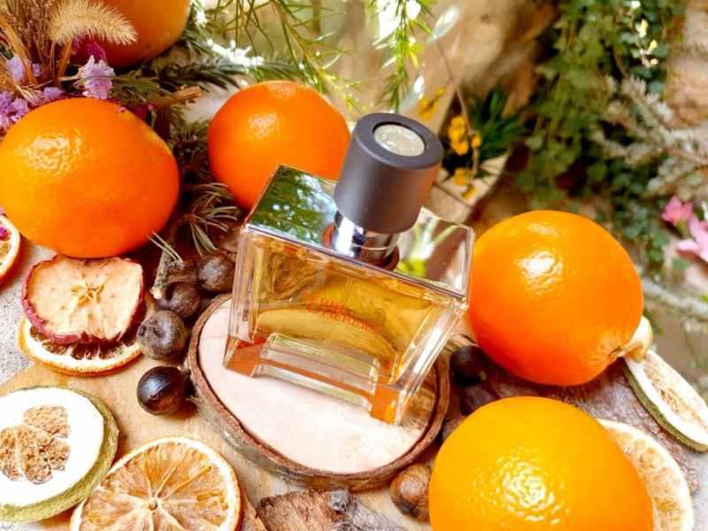 test Terre d'hermès Parfum