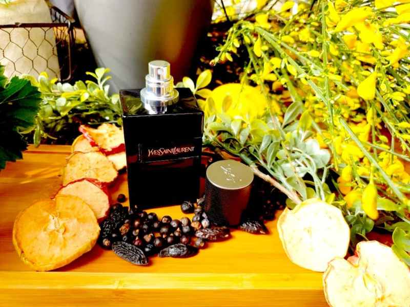 Y Le Parfum - test & avis