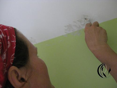 Rosen fr Ella  Interieurmalerei  Acrylmalerei  Malen