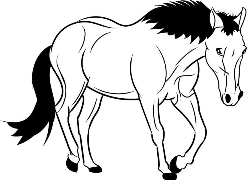 Malvorlage Pferd Einfach