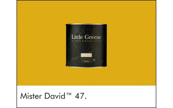 Little Greene_MISTER DAVID_#47