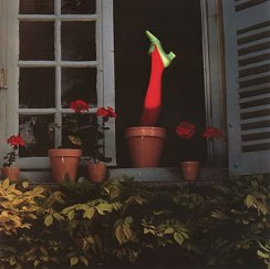 "1964, ""Shoe emerging from flower pot"""