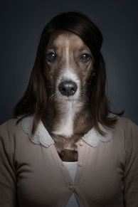 Underdogs by Sebastian Magnani