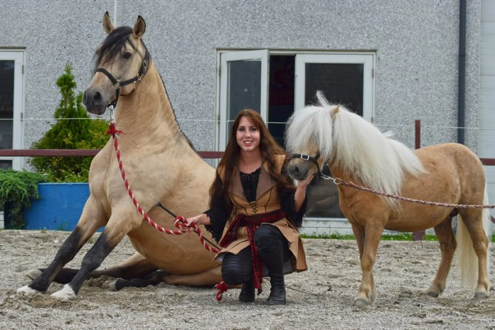Hesten i centrum