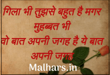 110+ love shayari collection in hindi