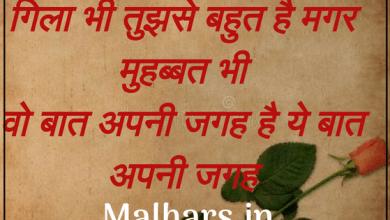 110+ love shayari collection in hindi