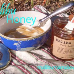 Malibu Honey