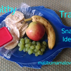 Healthy Travel Snack Ideas