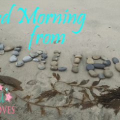 Conscious Living with Lindsey in Malibu – 7-29-15