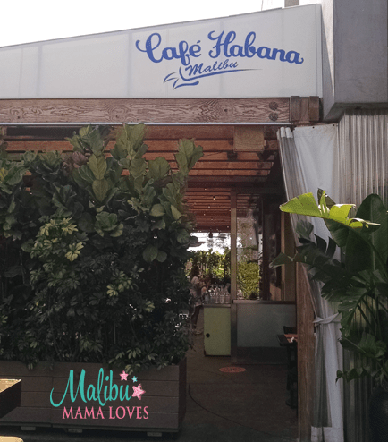cafe habana in malibu