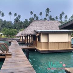 Family Travel Vlog from Koro Sun Resort, Fiji