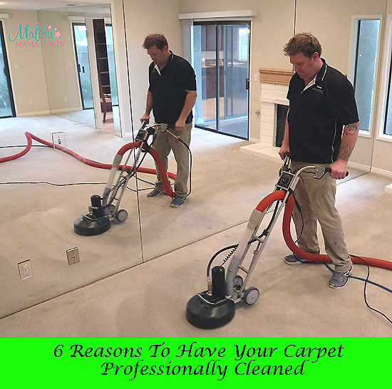 reasons to have your carpet professionally cleaned