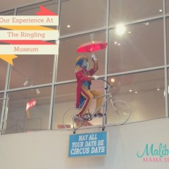 Family Travel: Our Ringling Museum Experience
