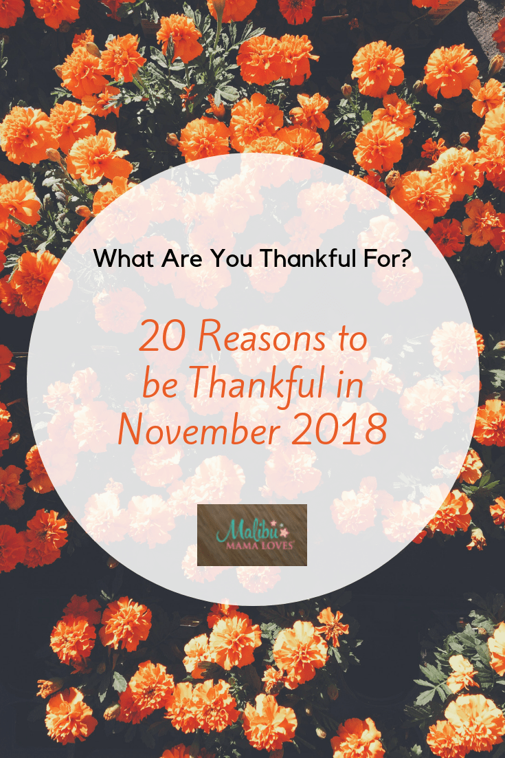 Conscious living: 20 Reasons to be Thankful in November 2018
