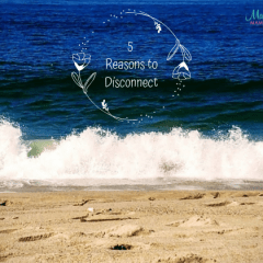 5 Reasons Why I Disconnected & What I Did (Psst… You Should Too!)