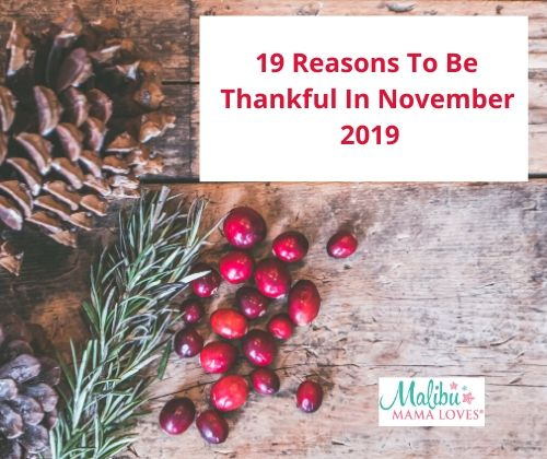 19 Reasons To Be Thankful In November 2019