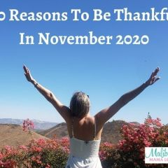 20 Reasons To Be Thankful In November 2020