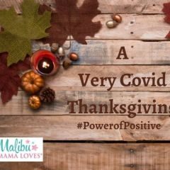 A Very Covid Thanksgiving