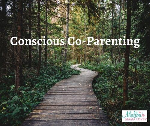 Conscious-Co-Parenting