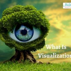 What Is Visualization?