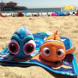 Finding Dory & Nemo Plush Stuffed Animals