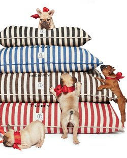 Harry Barker Personalized Vintage-Inspired Dog Bed