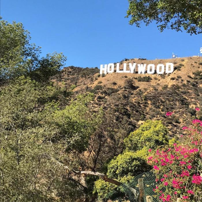 The Hollywood Sign from the Hollywood Hills