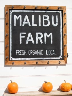 Pumpkin Season at the Malibu Farm on the Pier