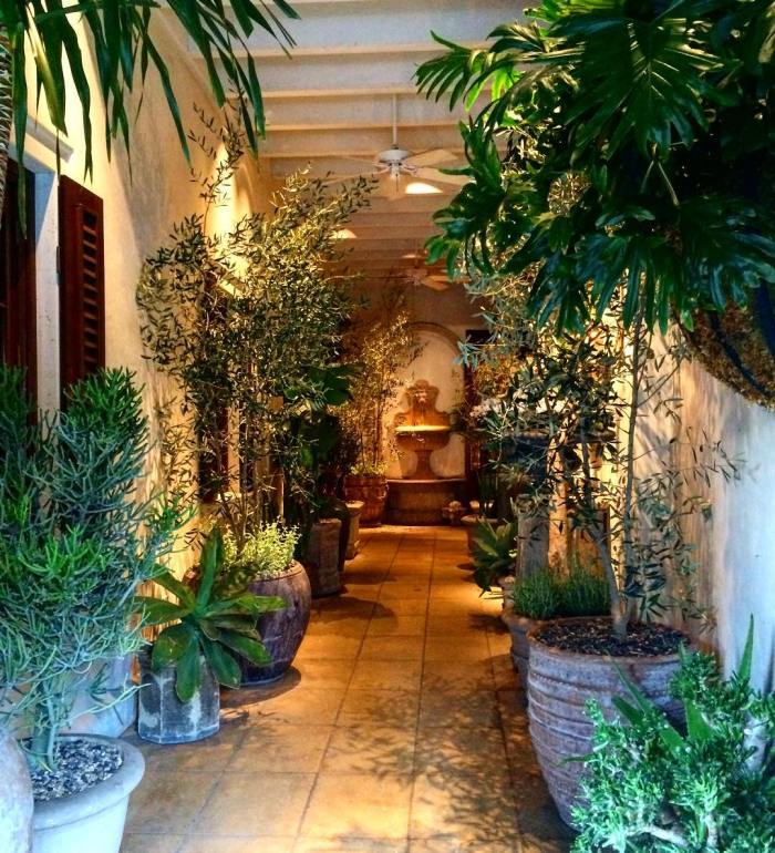 plant-entrance-ralph-lauren-rodeo-drive-beverly-hills-by-wallytee-11-30-2016-1