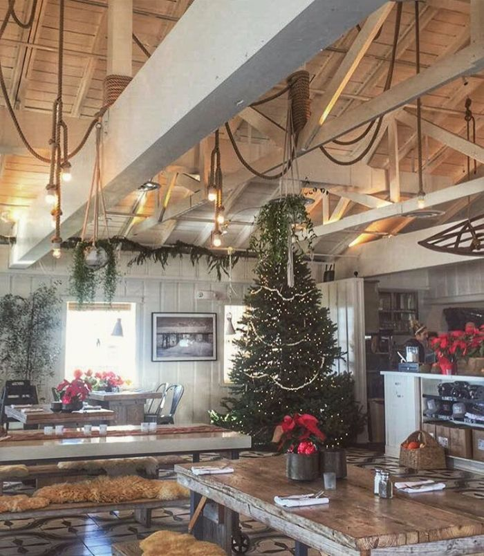 malibu-farm-christmas-tree-holiday-decor-on-the-pier-by-harperbabin-12-7-2016-1
