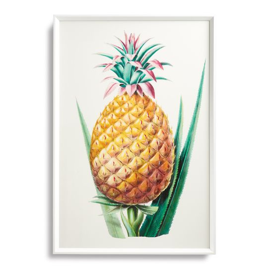 Tropical Art Print Collection from the New York Botanical Garden Archives
