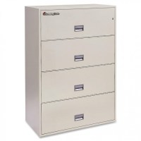 4-Drawer Vertical Filing Cabinet by SentrySafe | MALIBU MART