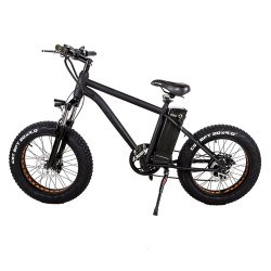New Fat Tire 20″ Electric Bicycle Portable 300W Smart Beach Snow All Terrain E-bike with 3 ...