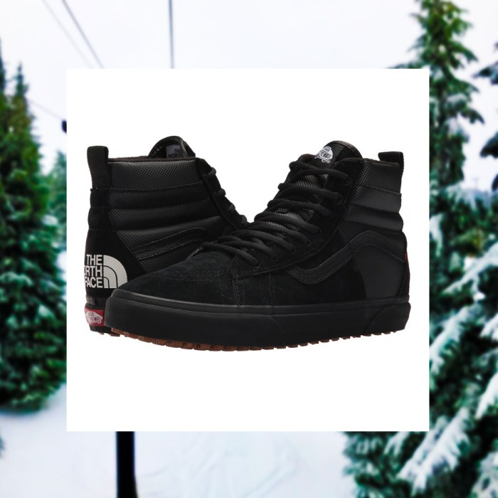 Vans SK8-Hi 46 MTE DX X The North Face Sneakers