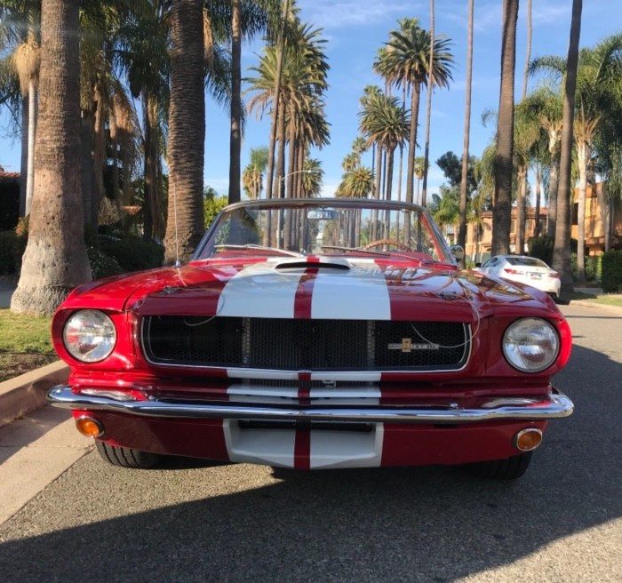 1965 Mustang Convertible GT 350 Tribute