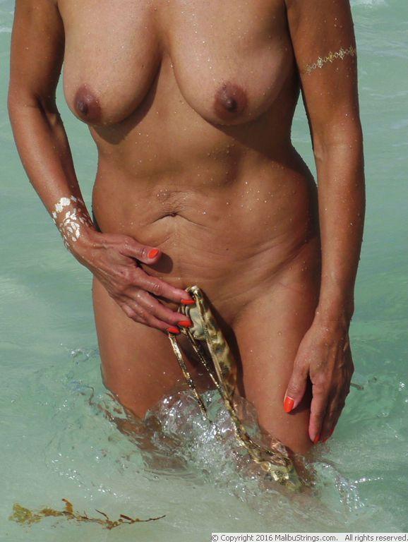 MalibuStringscom Bikini Competition  Gina  Gallery 1