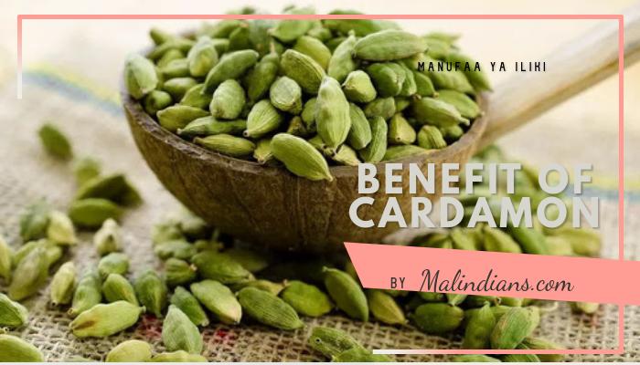 Benefits of Cardamon (Iliki) - Spices & foods of Malindi