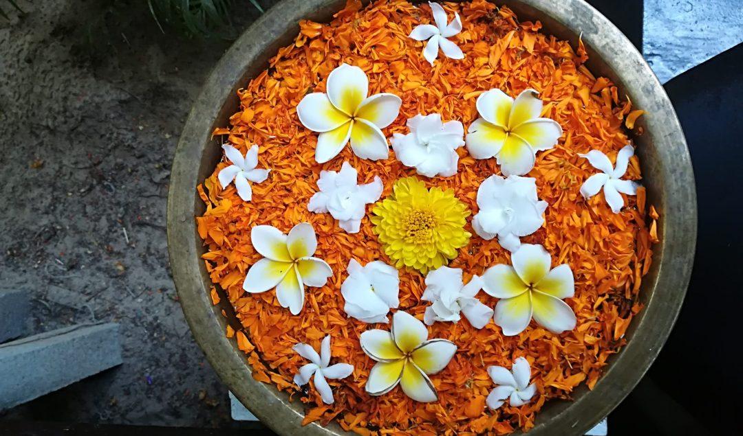 India Yoga Teacher Training Flowers