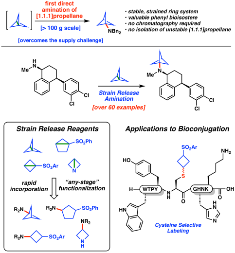 TOC strain release amination part1 Science