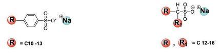 Alkil Benzen Sülfonatlar (LABSA) Alkan Sülfonatlar (AS)