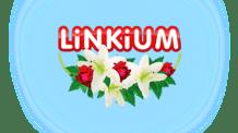 Logo société Linkium