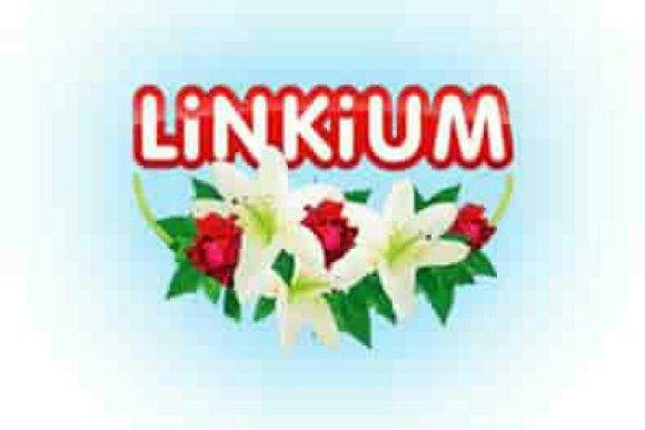 LINKIUM