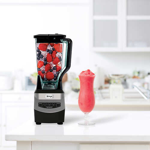 Ninja Professional 1000 Watt Blender