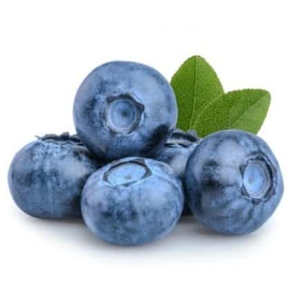 Blueberries 1 PNT