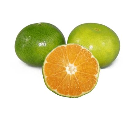 新鮮蜜桔孕婦水果酸橘子酸甜無籽皮薄青桔8斤包郵-喔小鮮食品專營店-愛奇藝商城