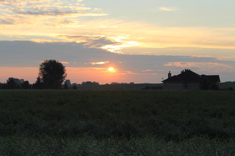 Sunset prarie