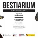 Bestiarium en Zaragoza